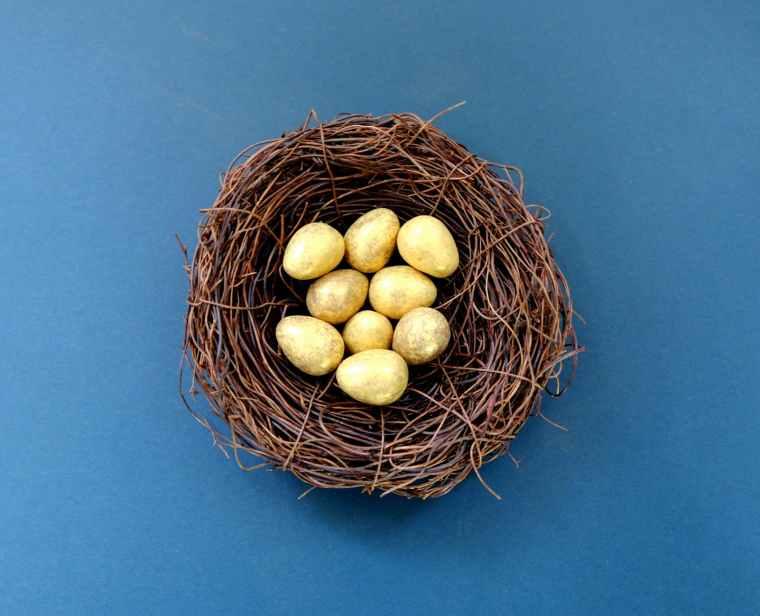 white eggs in brown nest